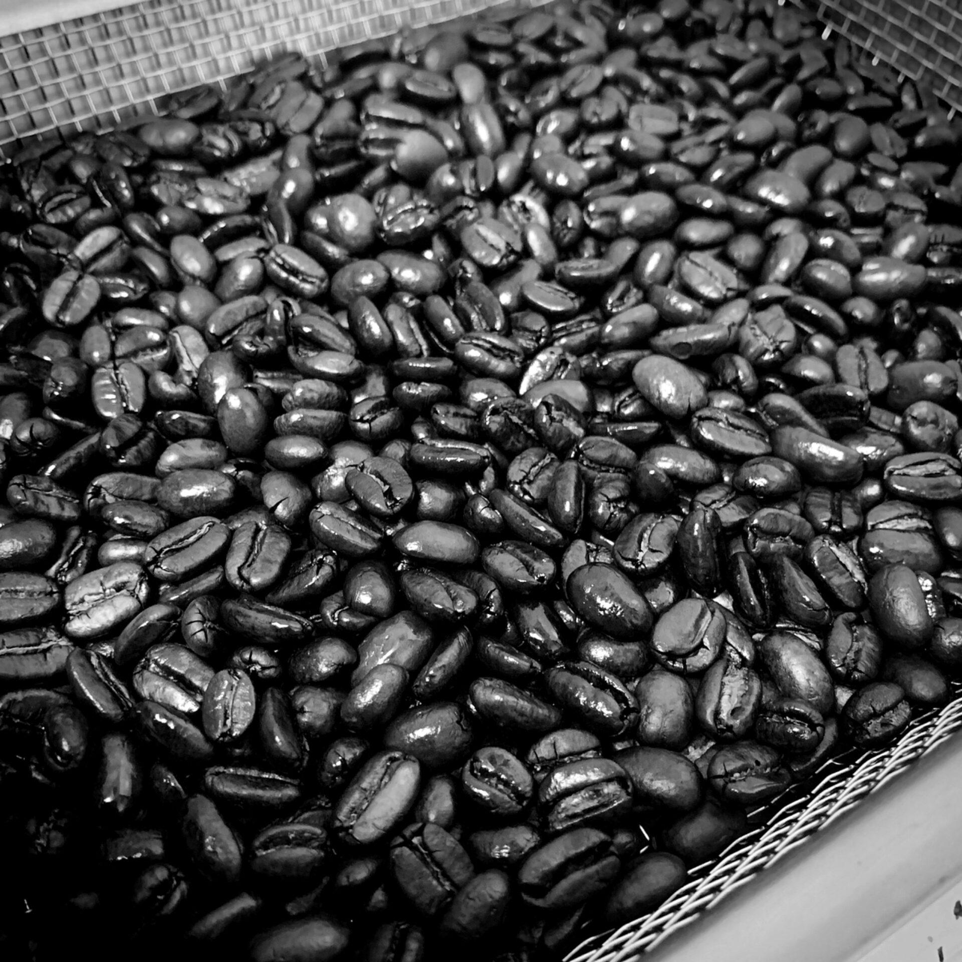 コーヒー豆 モノクロ